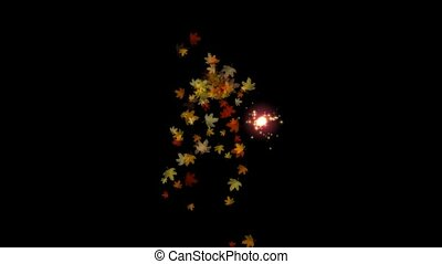 Maple leafs falling and flare light, Alpha Channel
