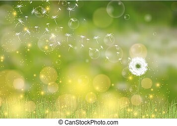 Vector Dandelion blowing nature green background