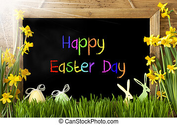 Sunny Narcissus, Egg, Bunny, Colorful Text Happy Easter Day...