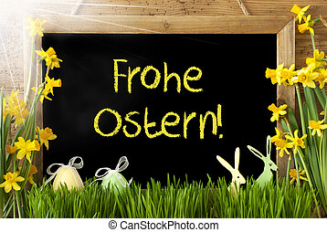 Sunny Narcissus, Egg, Bunny, Frohe Ostern Means Happy Easter...