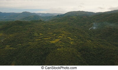 Mountains with tropical forest. Philippines Catanduanes...