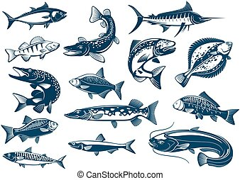 Fishes species vector isolated icons - Fish vector isolated...