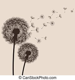 Nature background with flowers dandelions