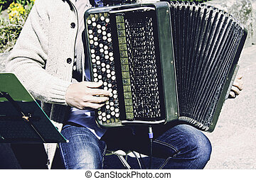 Musician playing accordion - Musician with accordion playing...