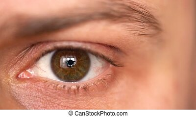 Beautiful blinking male eye close-up - Closeup of man's eye...