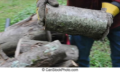 firewood cut being moved - detail moving freshly cut...