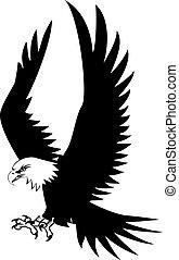 adelaar