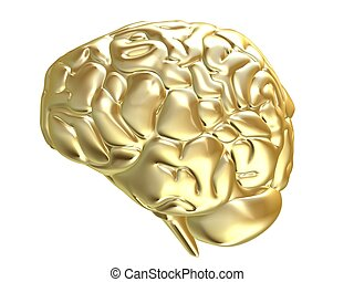 golden brain - 3d rendered illustration of an isolated...