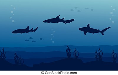 Silhouette of shark on blue sea background