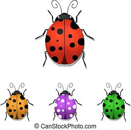 ladybugs - Set of colorful ladybugs isolated on white...