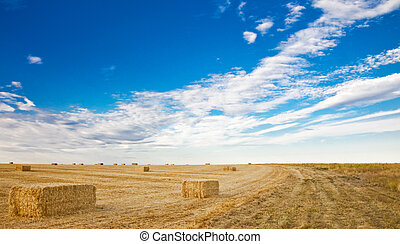 hay bales with blue skies