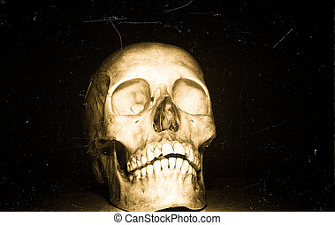 Skull on black backround - Front isolated view of a skull on...