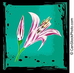 abstract green and colored lily - black background with...