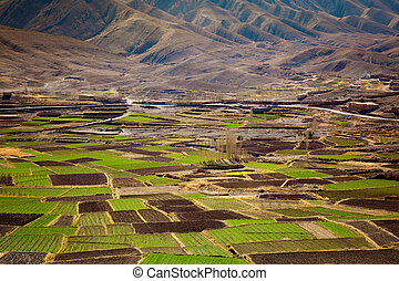 agriculture maghreb - Agriculture Atlas Valley landscape,...