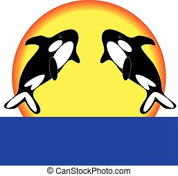 Orca on white background. Vector illustration.