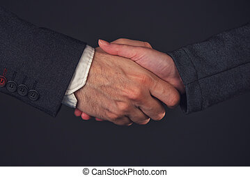 Businessman and businesswoman handshake in office