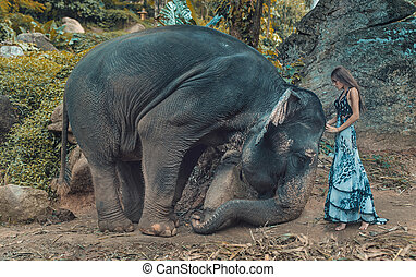 Picture presenting woman taming an elephant - Photo...