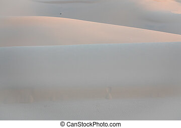 Layer of white sand dune , Vietnam
