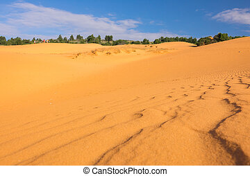 Selective focus and depth of fiedl the Red Sand Dunes of Mui...