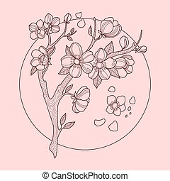 Cherry blossom color vector illustration