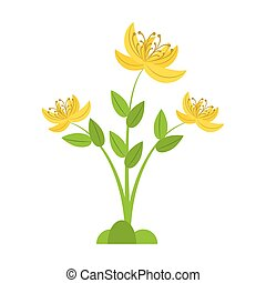 yellow lily flower natural vector illustration eps 10