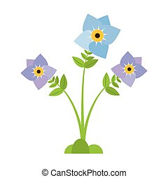 pansy flower plant nature vector illustration eps 10