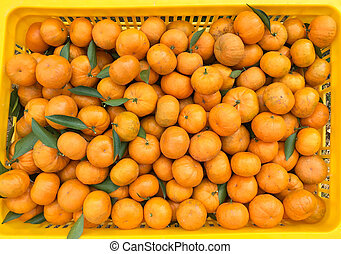 Chinese small cumquat oranges in a yellow box