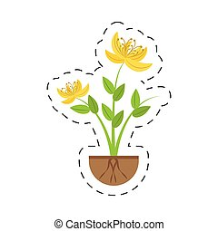yellow lily flower natural growing vector illustration eps...