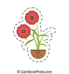 buttercup flower growing spring vector illustration eps 10