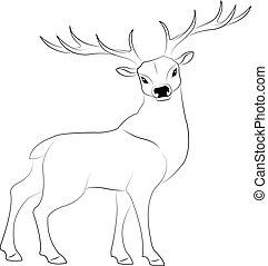 deer line drawing