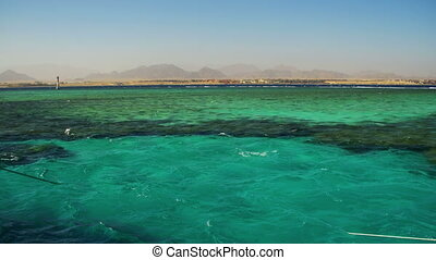 Coral Reef Tiran in the Red Sea and the Clear Water in Egypt...