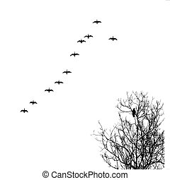 vector silhouette geese in sky and crow on tree