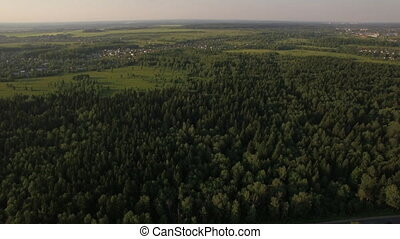 Aerial flight above the huge green forest, Russia - Aerial...