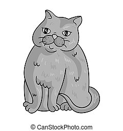 Exotic Shorthair icon in monochrome style isolated on white...