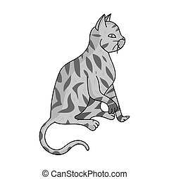 American Shorthair icon in monochrome style isolated on...