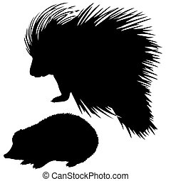 silhouette of the hedgehog and porcupine on white background...