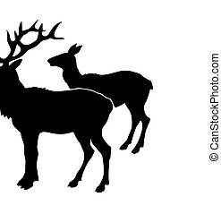 vector illustration of the deers