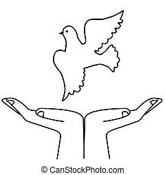 vector illustration flying dove on white background