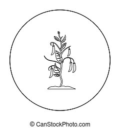 Peas icon outline. Single plant icon from the big farm,...