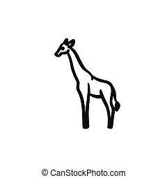 Giraffe sketch icon. - Giraffe vector sketch icon isolated...