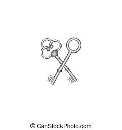 silver old keys icon stock