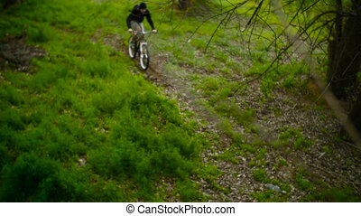 Mountain Biker Making Cross-Country. Spring Forest