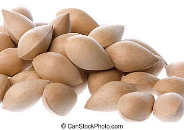 Ginkgo Nuts Isolated