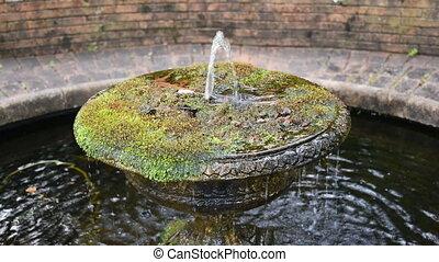 Garden fountain close up