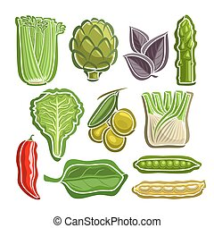 Vector Set Vegetables simple Logo: celery, artichoke, basil,...