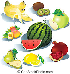 Fruits - Fruits on a white background Vector...