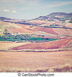 Stubble Fields