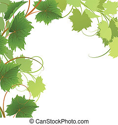Vine on a white background Clipping Mask