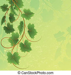 Vine on a yellow background Clipping Mask