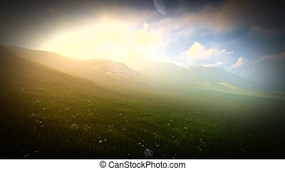 Grass field with rolling hills and wildflowers in Ireland -...